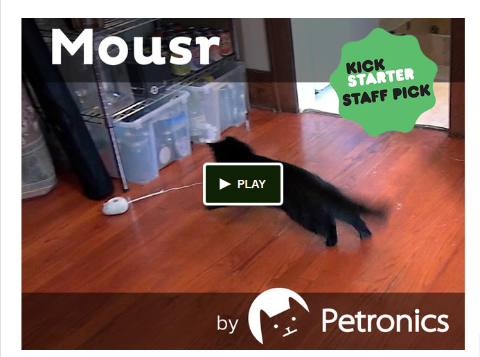 Mousr- The robotic mouse that plays with your cat by Petronics